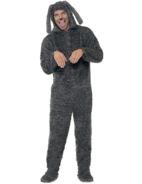 Hond Schattig Kostuum