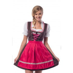 Hilda Hefe Bierfeest Dirndl Bruin Vrouw Kostuum