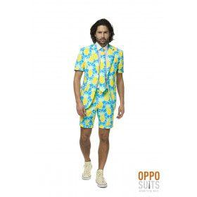 Tropisch Lange Zomer Ananas Zomer Man Kostuum