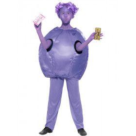 Sjakie En De Chocoladefabriek Violet Beauregarde Beauderest Jongen Kostuum