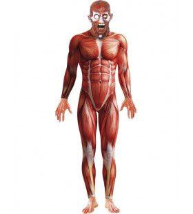 Anatomie Man Kostuum-Man Zonder Huid