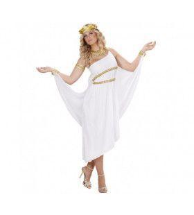 Griekse Godin Iris Vrouw Kostuum