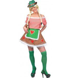 Munchen Dirndl Vrouw Kostuum