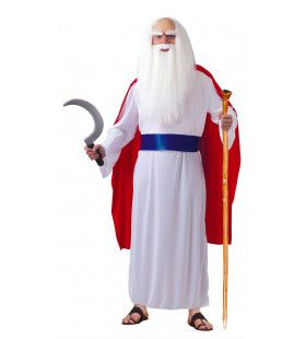 Franse Toverdrank Druide Man Kostuum