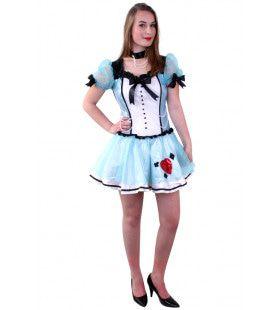 Lichtblauwe Alice Vrouw Kostuum