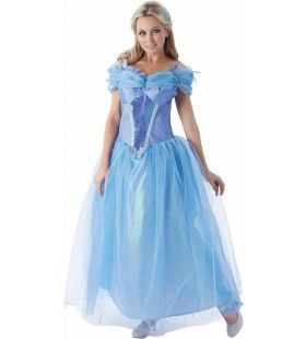 Assepoester Op Weg Naar Het Prinsenbal Vrouw Kostuum