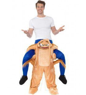 Boven Op Een Kakkerlak Man Kostuum