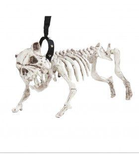 Horror Huisdier Skelet Hond Met Riem, 45 Centimeter