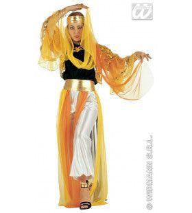 Geklede Harem Danseres, Luxe Kostuum Vrouw