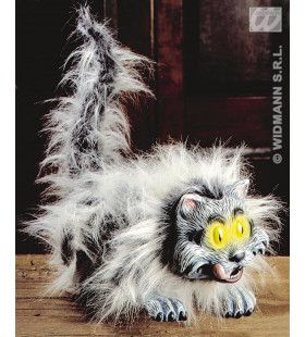 Harige Buigbare Kat