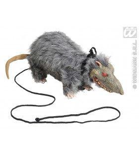 Ratten Aan De Lijn