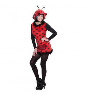 Snoezig Lieveheersbeestje Pluche Vrouw Kostuum