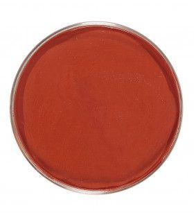 Unicolor Make-Up In 25 Gram Bakje, Indiaan Rood