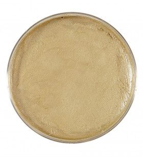 Make-Up In 25gr Bakje, Goud