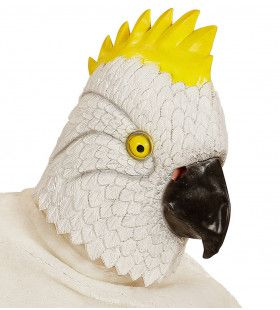Cartoony Masker, Kaketoe