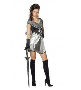 Shiny Ridderdame Vrouw Kostuum